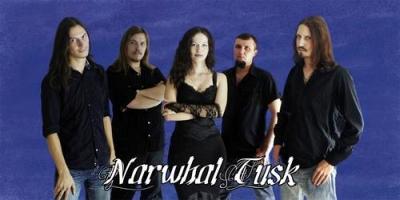 Narwhal Tusk