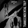 Transcendenta Trip